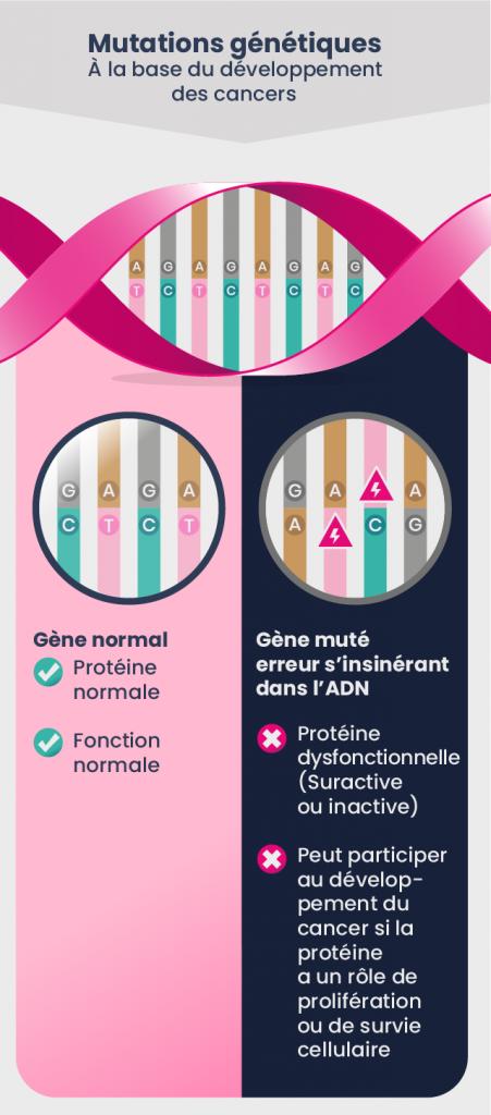 Mutations génétiques - À la base du développement des cancers